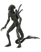 Aliens Action Figure 23 cm Series 7, AvP Warrior Alien