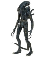 Neca Aliens Action Figure 1/4 1986 Warrior 56 cm