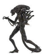 Aliens Action Figure 23 cm Ultimate Alien Warrior Brown