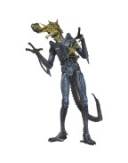 Aliens Action Figures 17-23 cm Series 12  Battle Damaged Warrior Blue