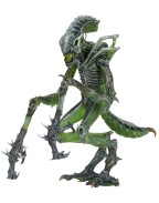 Aliens Series 10 Deluxe Action Figures Mantis Alien 23 cm