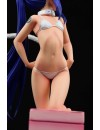 Fairy Tail Statue 1/6 Wendy Marvell White Cat Gravure Style 23 cm