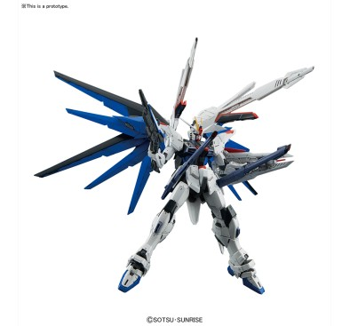 Freedom Gundam Ver.2.0 (MG) 1/100 (model kit)