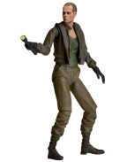 Aliens Action Figure 18 cm Series 8, Ripley (Bald Prisoner)